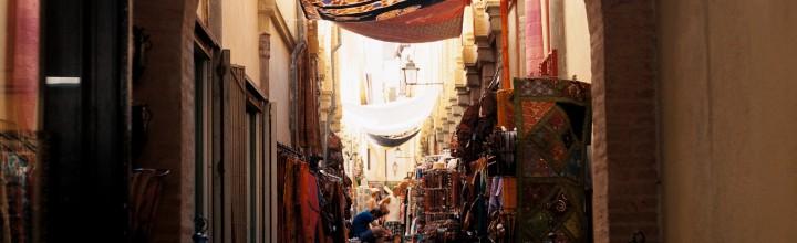 Granada – Meopta Flexaret VII